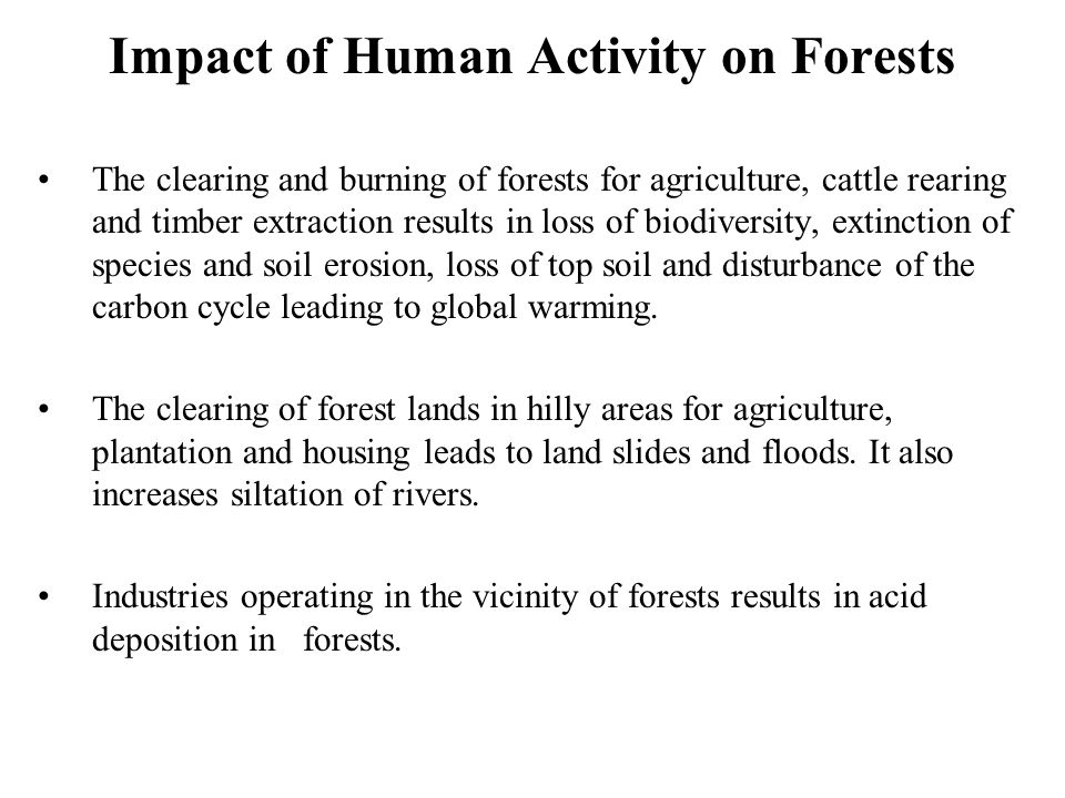 Impact of Human Activity on Forests The clearing and burning of forests for agriculture, cattle rearing and timber extraction results in loss of biodi