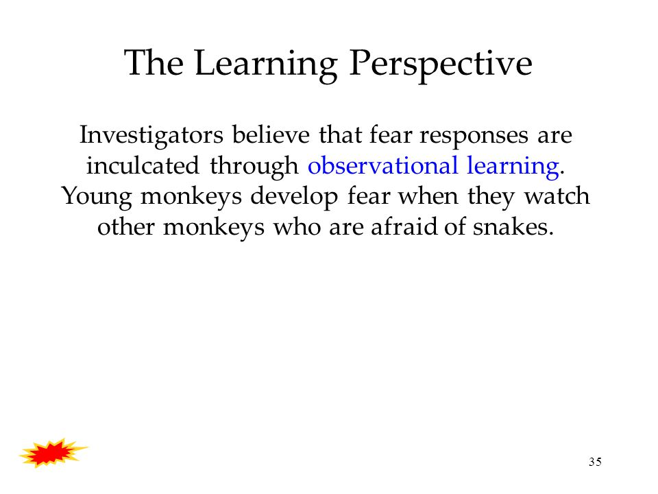 35 The Learning Perspective Investigators believe that fear responses are inculcated through observational learning.