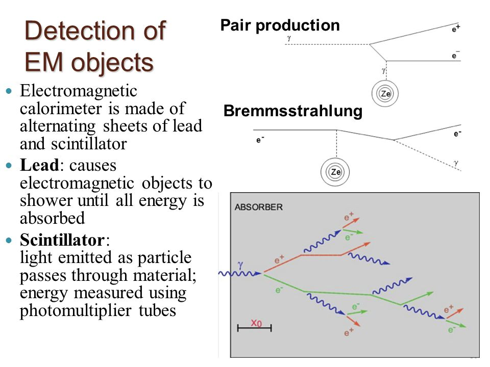 Detection of EM objects Electromagnetic calorimeter is made of alternating sheets of lead and scintillator Lead: causes electromagnetic objects to shower until all energy is absorbed Scintillator: light emitted as particle passes through material; energy measured using photomultiplier tubes 18 Pair production Bremmsstrahlung