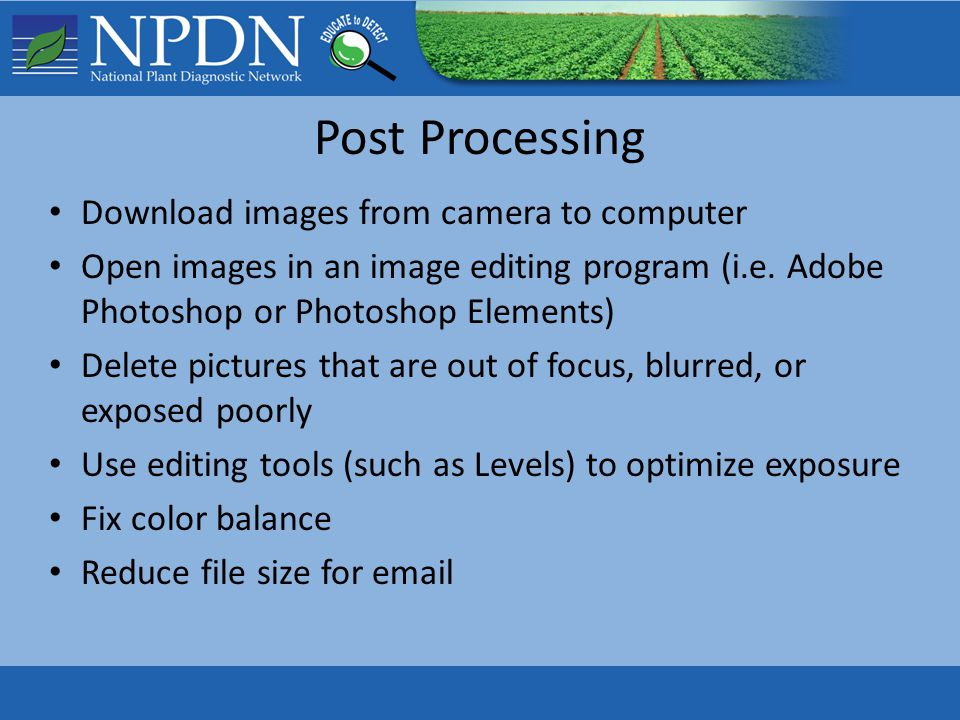 Post Processing Download images from camera to computer Open images in an image editing program (i.e. Adobe Photoshop or Photoshop Elements) Delete pi