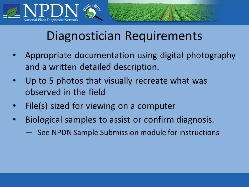 Diagnostician Requirements Appropriate documentation using digital photography and a written detailed description. Up to 5 photos that visually recrea