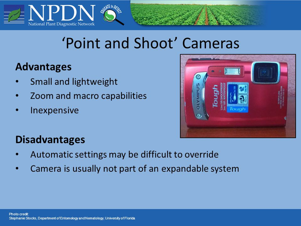 'Point and Shoot' Cameras Advantages Small and lightweight Zoom and macro capabilities Inexpensive Disadvantages Automatic settings may be difficult to override Camera is usually not part of an expandable system Photo credit: Stephanie Stocks, Department of Entomology and Nematology, University of Florida