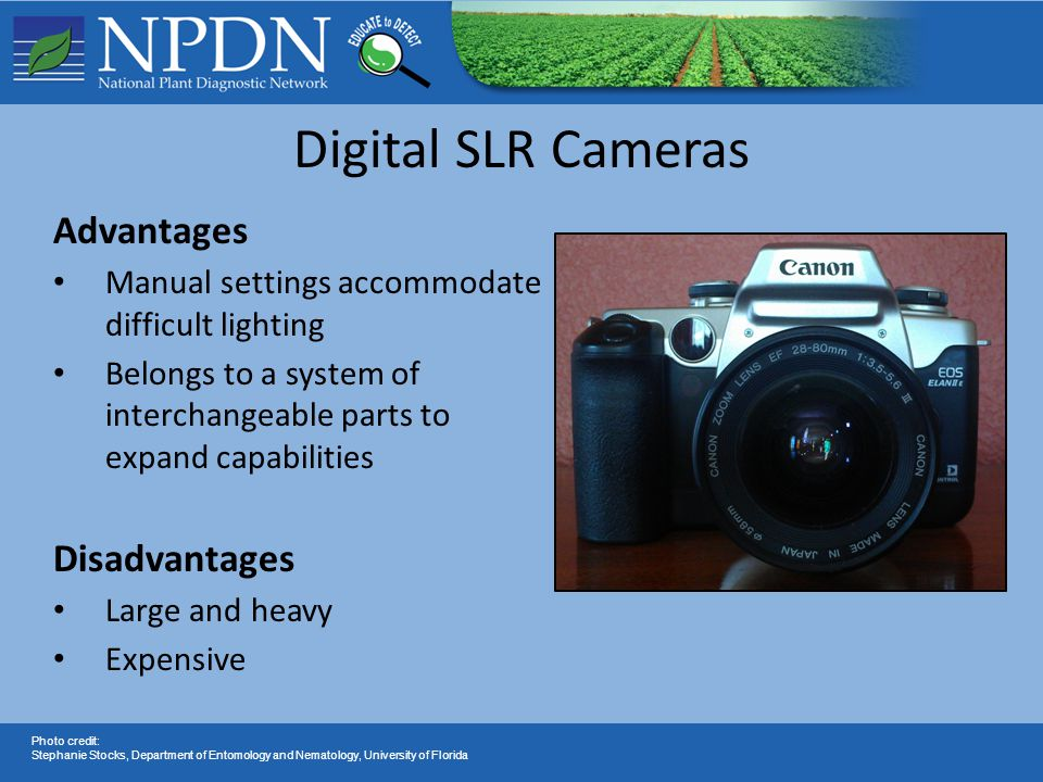 Digital SLR Cameras Advantages Manual settings accommodate difficult lighting Belongs to a system of interchangeable parts to expand capabilities Disa