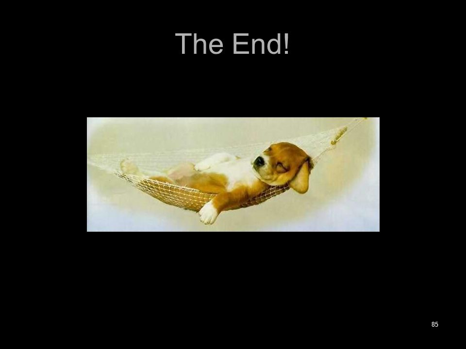 The End! 85