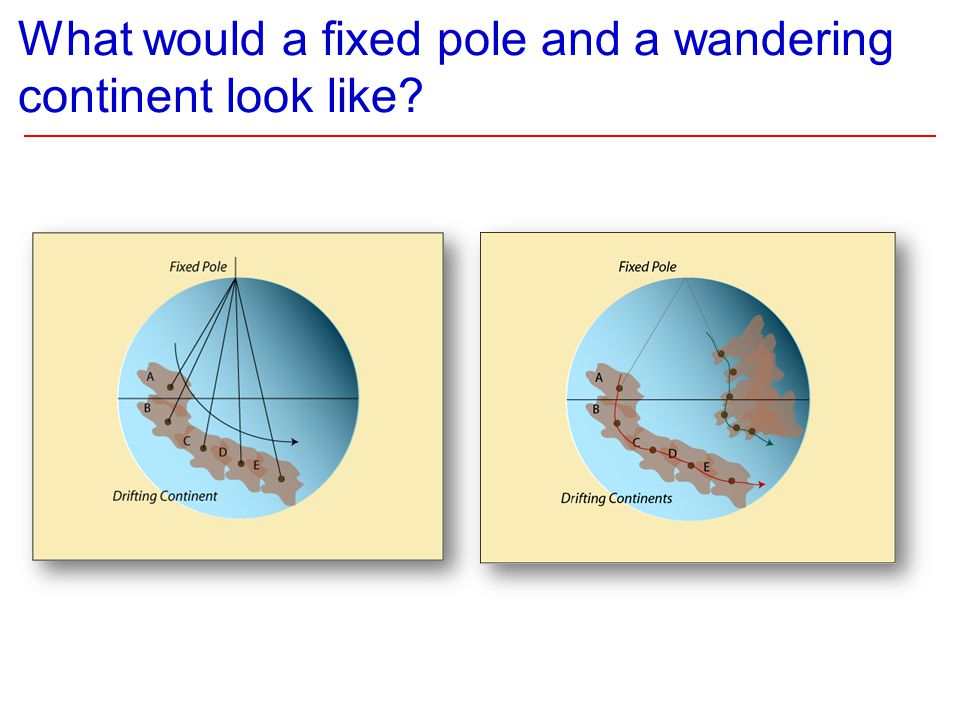 What would a fixed pole and a wandering continent look like?