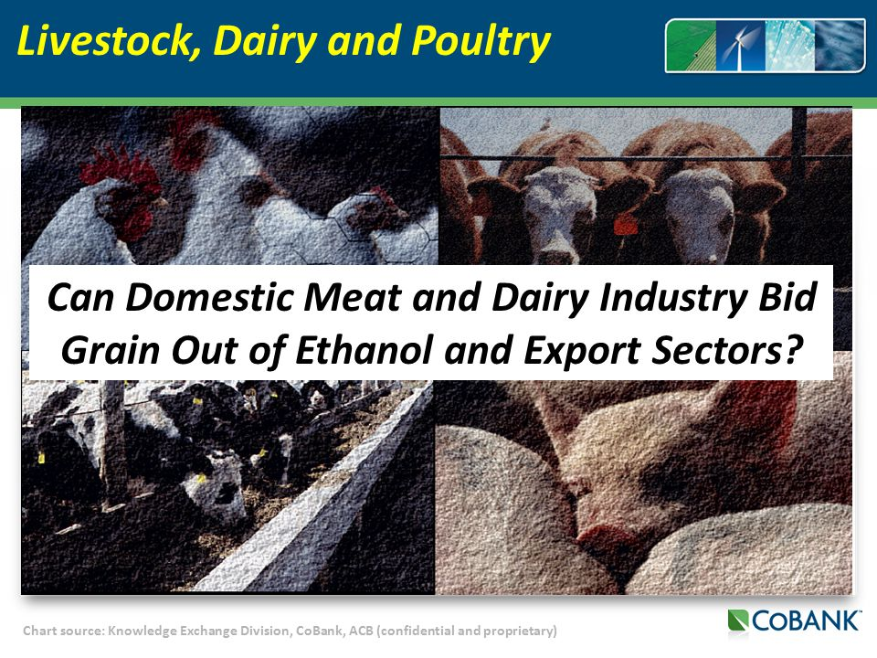 Chart source: Knowledge Exchange Division, CoBank, ACB (confidential and proprietary) Livestock, Dairy and Poultry Can Domestic Meat and Dairy Industry Bid Grain Out of Ethanol and Export Sectors