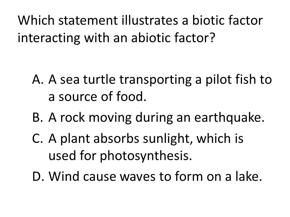 Which statement illustrates a biotic factor interacting with an abiotic factor? A.A sea turtle transporting a pilot fish to a source of food. B.A rock