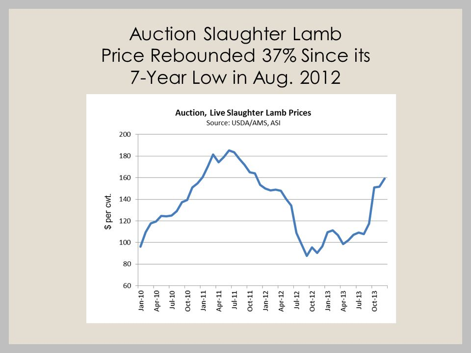 Auction Slaughter Lamb Price Rebounded 37% Since its 7-Year Low in Aug. 2012
