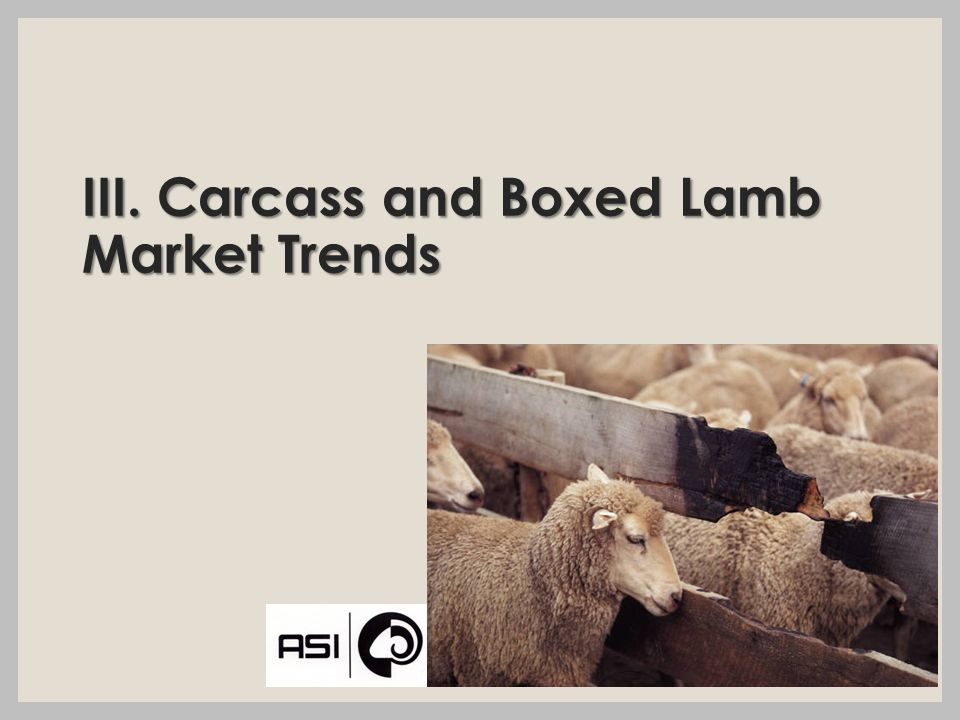 III. Carcass and Boxed Lamb Market Trends
