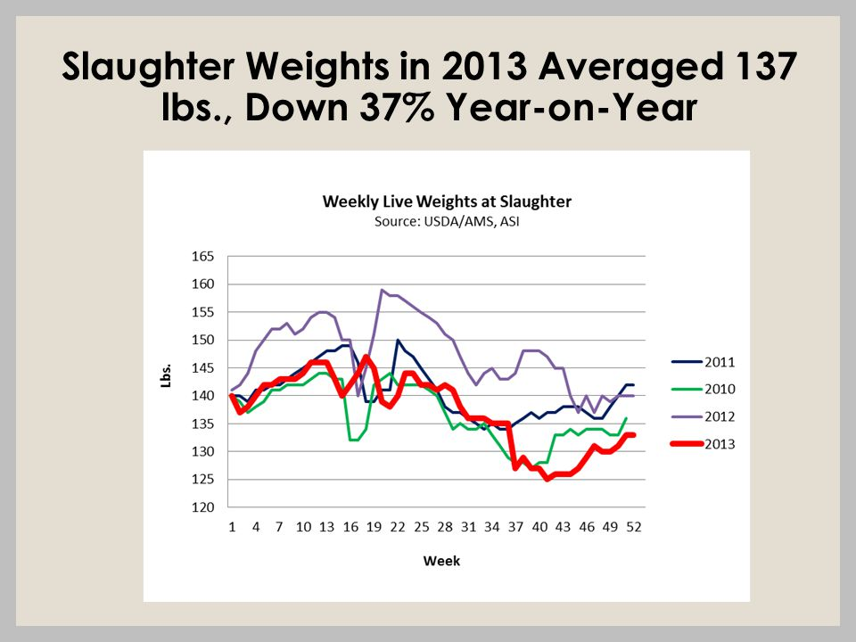 Slaughter Weights in 2013 Averaged 137 lbs., Down 37% Year-on-Year