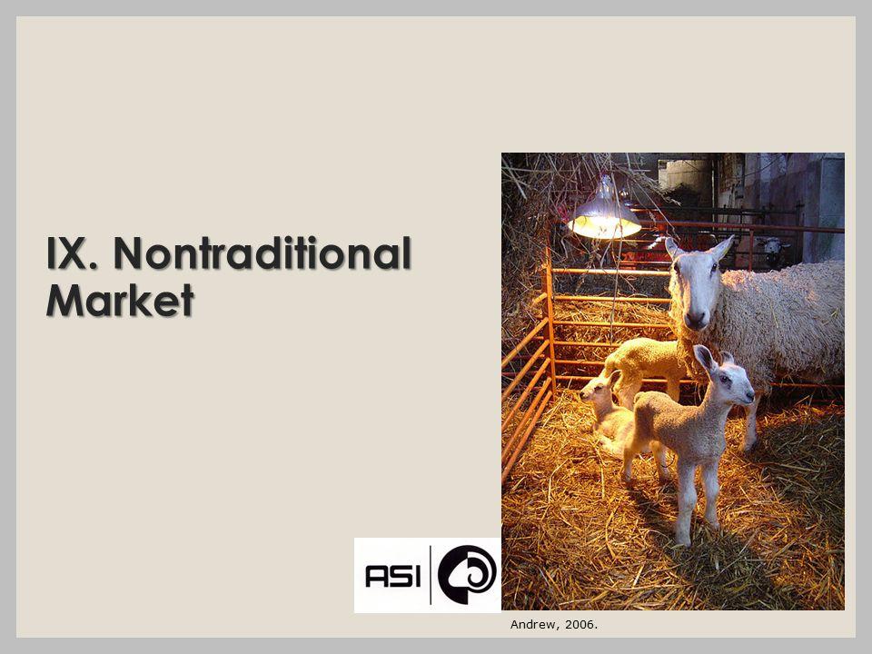 IX. Nontraditional Market Andrew, 2006.