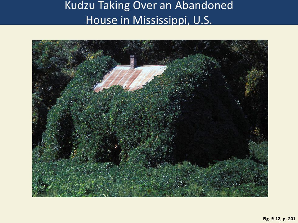 Fig. 9-12, p. 201 Kudzu Taking Over an Abandoned House in Mississippi, U.S.