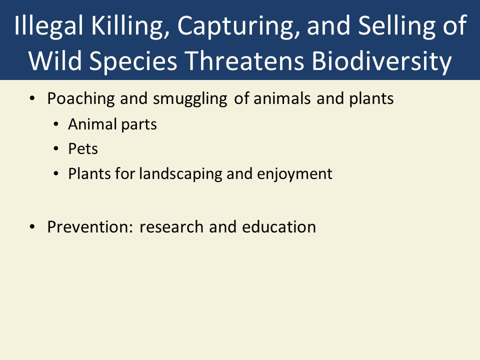 Illegal Killing, Capturing, and Selling of Wild Species Threatens Biodiversity Poaching and smuggling of animals and plants Animal parts Pets Plants for landscaping and enjoyment Prevention: research and education