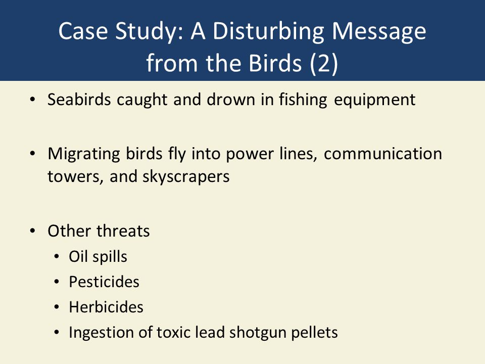 Case Study: A Disturbing Message from the Birds (2) Seabirds caught and drown in fishing equipment Migrating birds fly into power lines, communication towers, and skyscrapers Other threats Oil spills Pesticides Herbicides Ingestion of toxic lead shotgun pellets