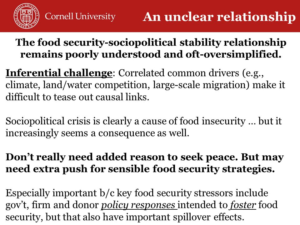 The food security-sociopolitical stability relationship remains poorly understood and oft-oversimplified.