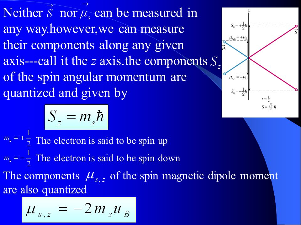 Spin Angular Momentum and Spin Magnetic Dipole Moment The spin magnetic dipole moment,which is related to the spin angular momentum The magnitude of a