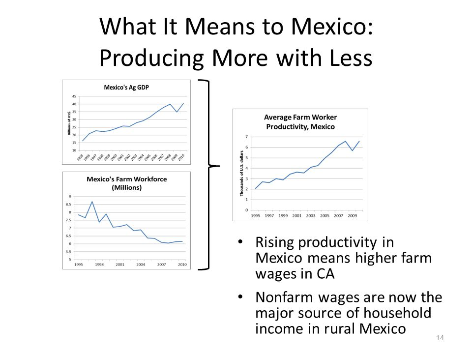 What It Means to Mexico: Producing More with Less 14 Rising productivity in Mexico means higher farm wages in CA Nonfarm wages are now the major source of household income in rural Mexico