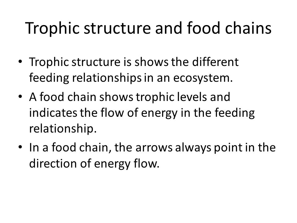 Trophic structure and food chains Trophic structure is shows the different feeding relationships in an ecosystem. A food chain shows trophic levels an