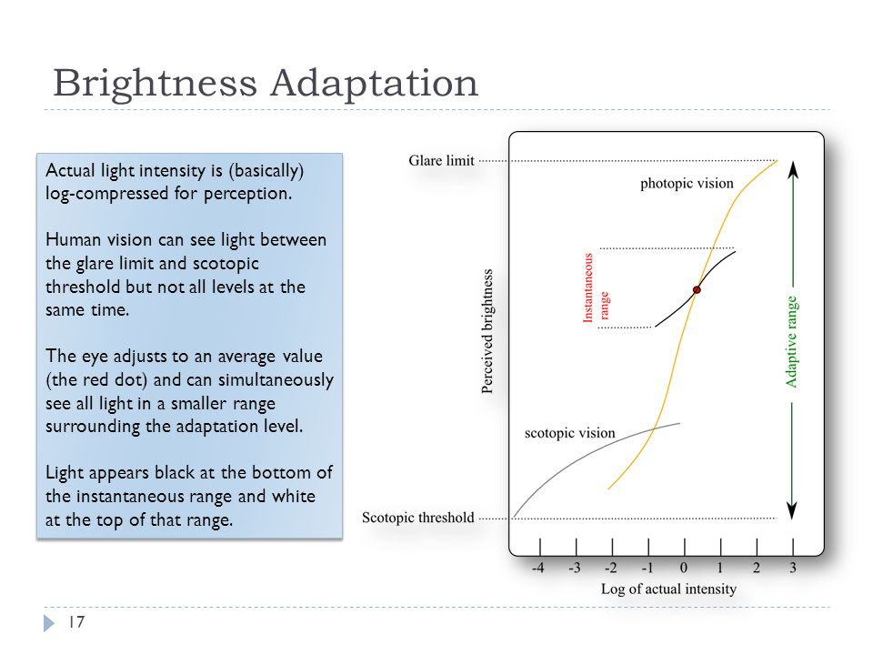 Brightness Adaptation Actual light intensity is (basically) log-compressed for perception.