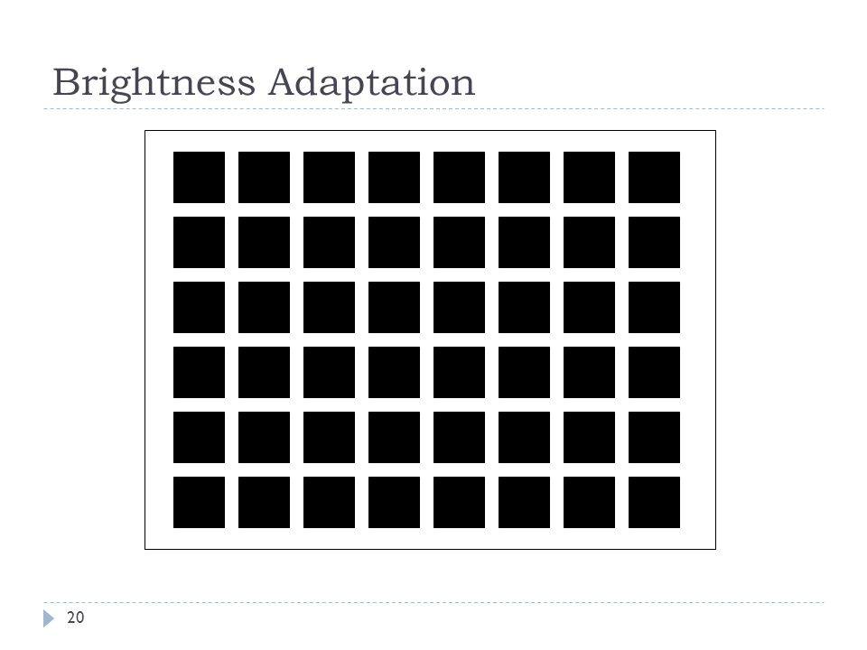 Brightness Adaptation 20