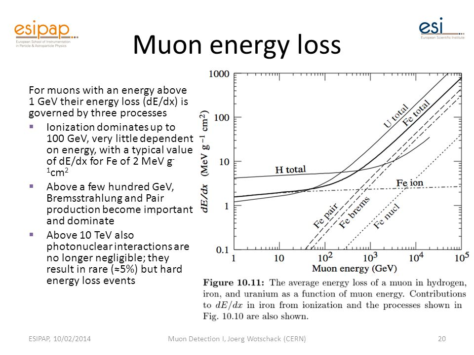 Muon energy loss For muons with an energy above 1 GeV their energy loss (dE/dx) is governed by three processes  Ionization dominates up to 100 GeV, very little dependent on energy, with a typical value of dE/dx for Fe of 2 MeV g - 1 cm 2  Above a few hundred GeV, Bremsstrahlung and Pair production become important and dominate  Above 10 TeV also photonuclear interactions are no longer negligible; they result in rare (≈5%) but hard energy loss events ESIPAP, 10/02/2014Muon Detection I, Joerg Wotschack (CERN)20