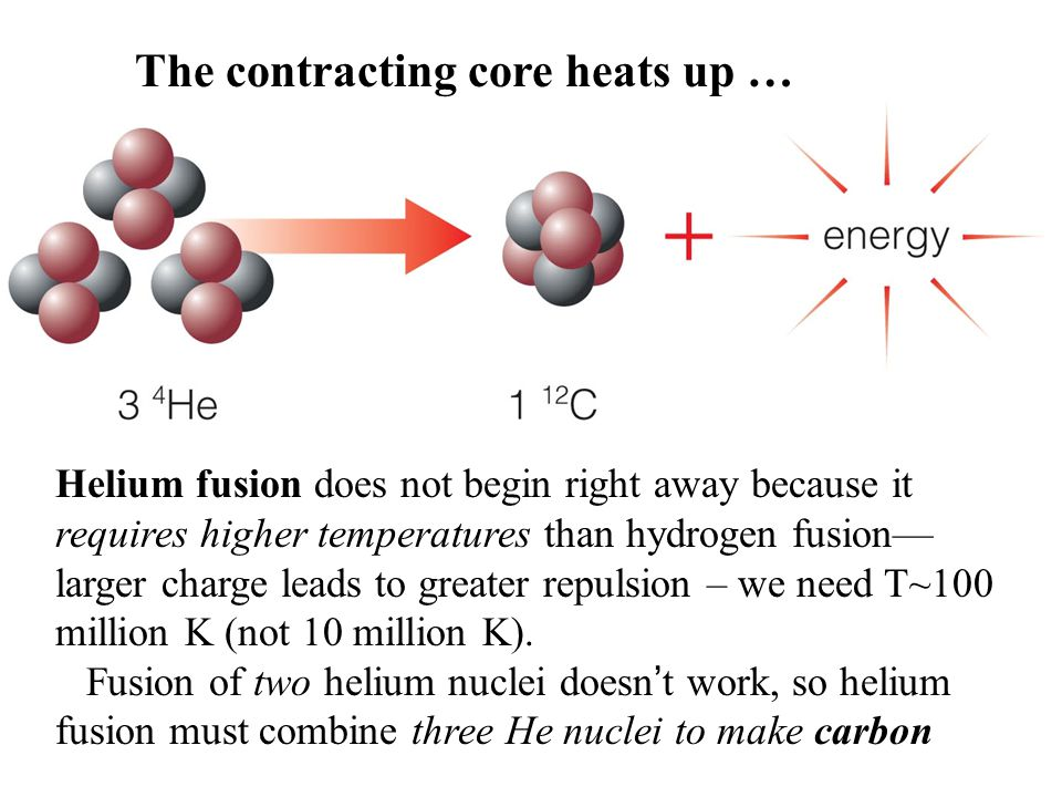 Helium fusion does not begin right away because it requires higher temperatures than hydrogen fusion— larger charge leads to greater repulsion – we ne
