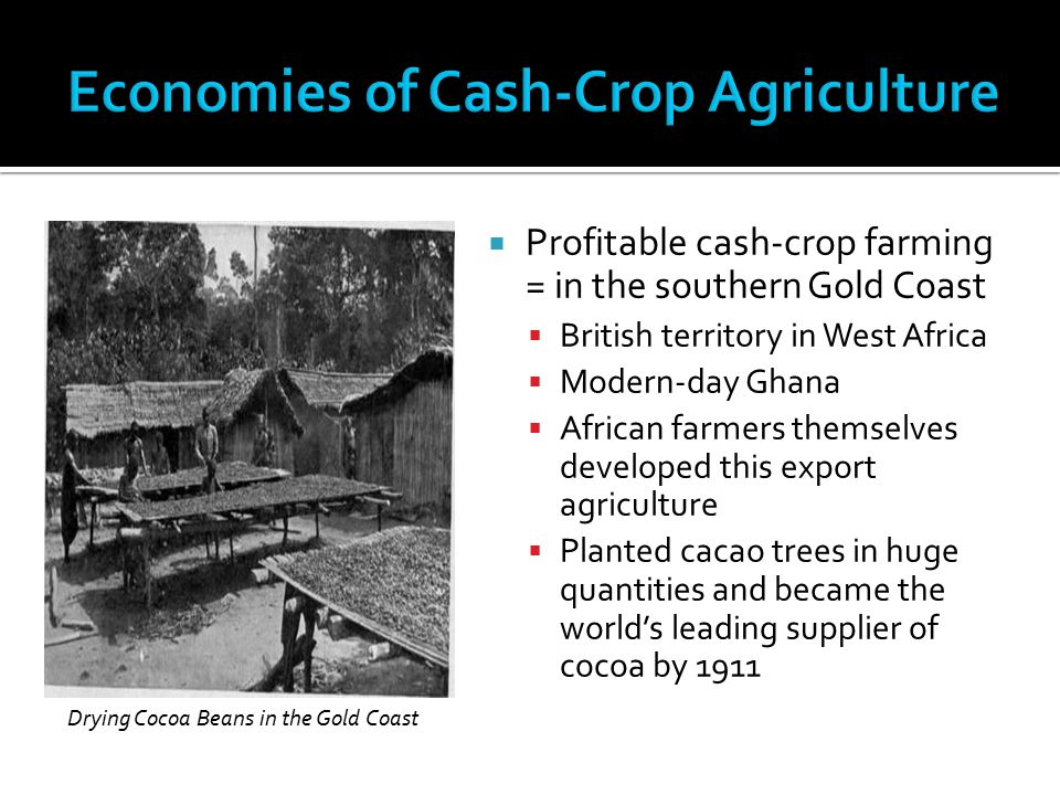 Profitable cash-crop farming = in the southern Gold Coast  British territory in West Africa  Modern-day Ghana  African farmers themselves develop