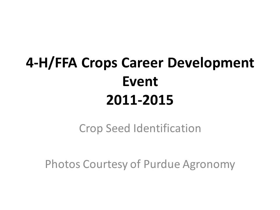 4-H/FFA Crops Career Development Event 2011-2015 Crop Seed Identification Photos Courtesy of Purdue Agronomy