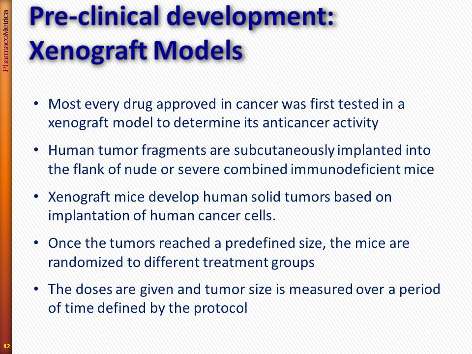 12 Most every drug approved in cancer was first tested in a xenograft model to determine its anticancer activity Human tumor fragments are subcutaneously implanted into the flank of nude or severe combined immunodeficient mice Xenograft mice develop human solid tumors based on implantation of human cancer cells.