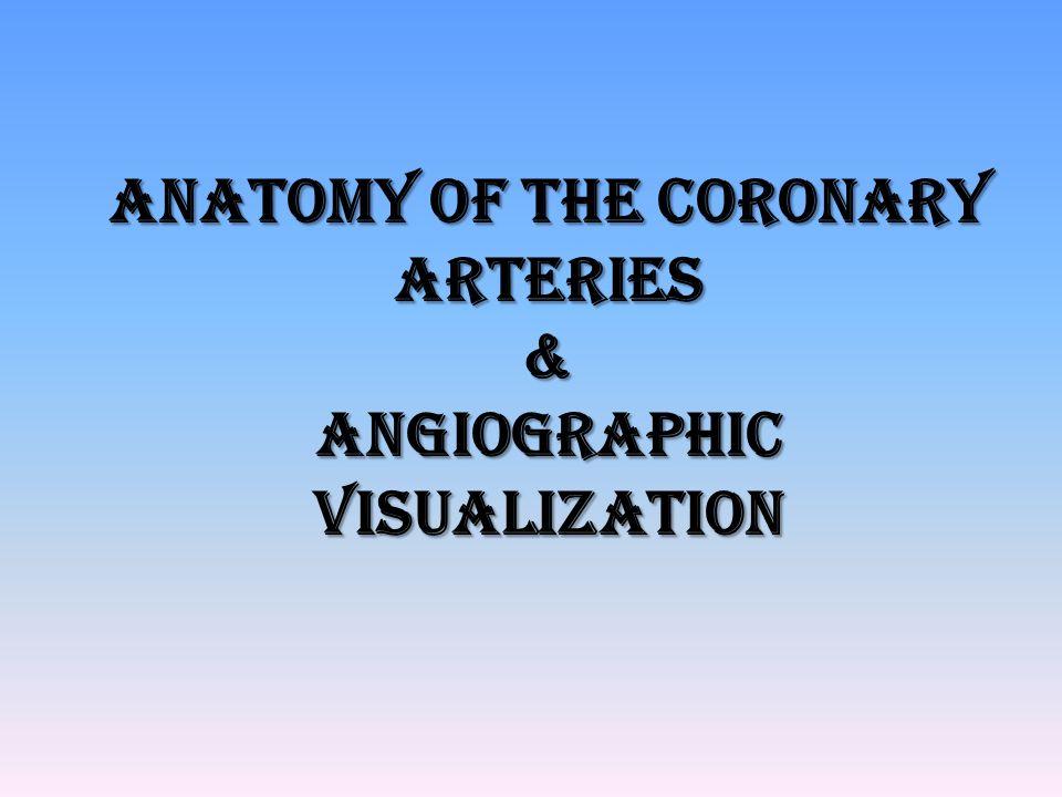 Coronary segment classification system CASS investigators – 27 segments BARI – 29 segments ( ramus intermedius and 3 rd diagonal branch)