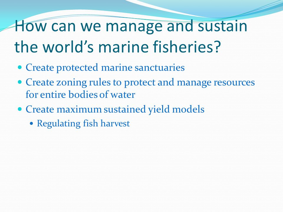 How can we manage and sustain the world's marine fisheries.