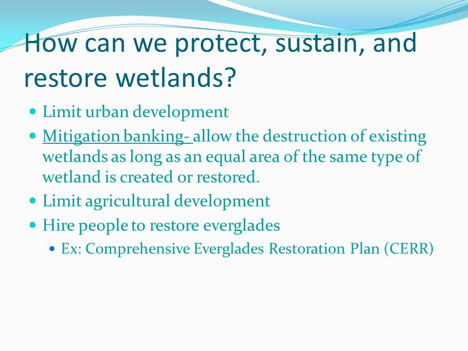 How can we protect, sustain, and restore wetlands.