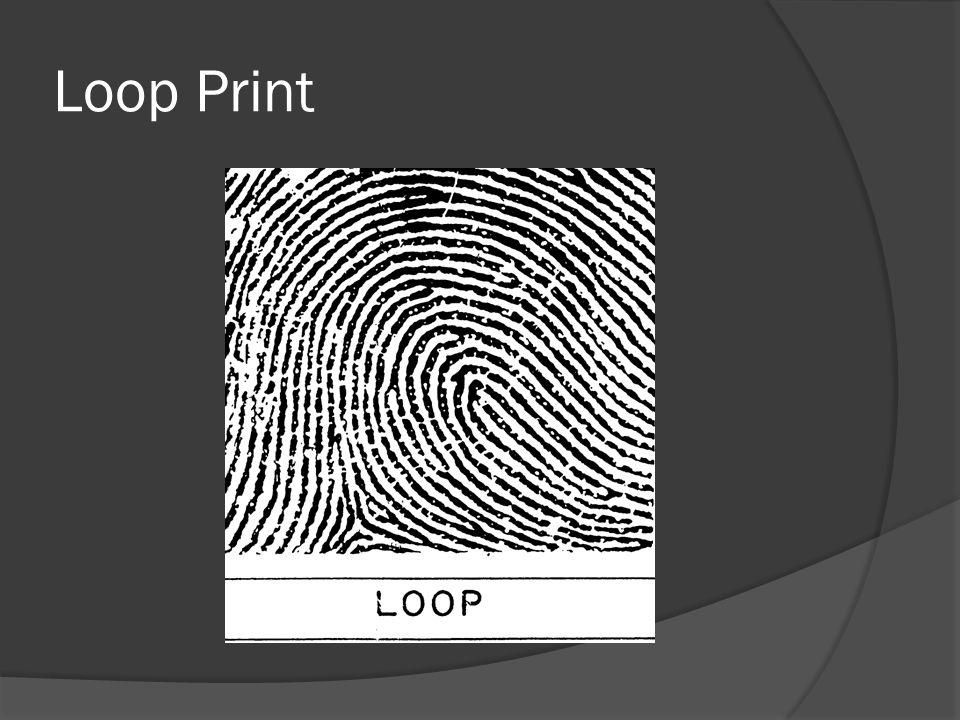 Loop Print