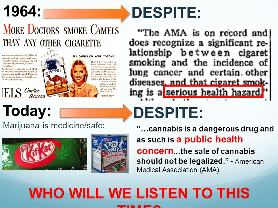 """1964: Today: """"…cannabis is a dangerous drug and as such is a public health concern...the sale of cannabis should not be legalized."""" - American Medical"""