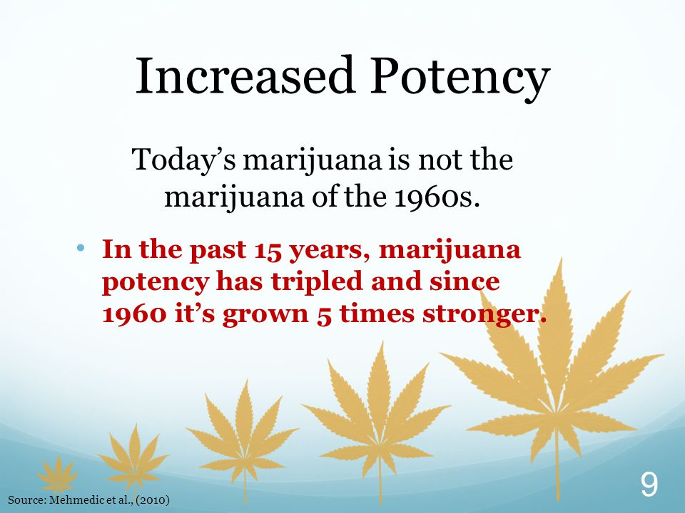 Today's marijuana is not the marijuana of the 1960s. In the past 15 years, marijuana potency has tripled and since 1960 it's grown 5 times stronger. I