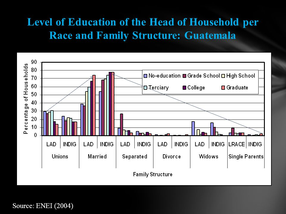 Level of Education of the Head of Household per Race and Family Structure: Guatemala Source: ENEI (2004)