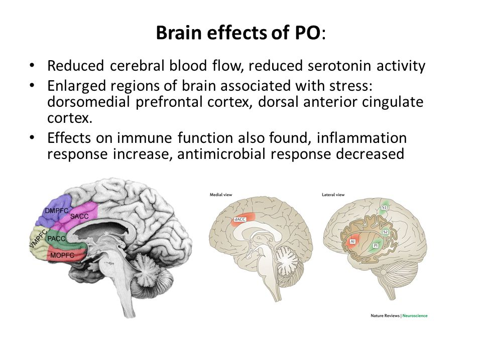 Brain effects of PO: Reduced cerebral blood flow, reduced serotonin activity Enlarged regions of brain associated with stress: dorsomedial prefrontal cortex, dorsal anterior cingulate cortex.