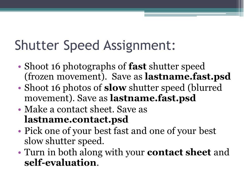Shutter Speed Assignment: Shoot 16 photographs of fast shutter speed (frozen movement).