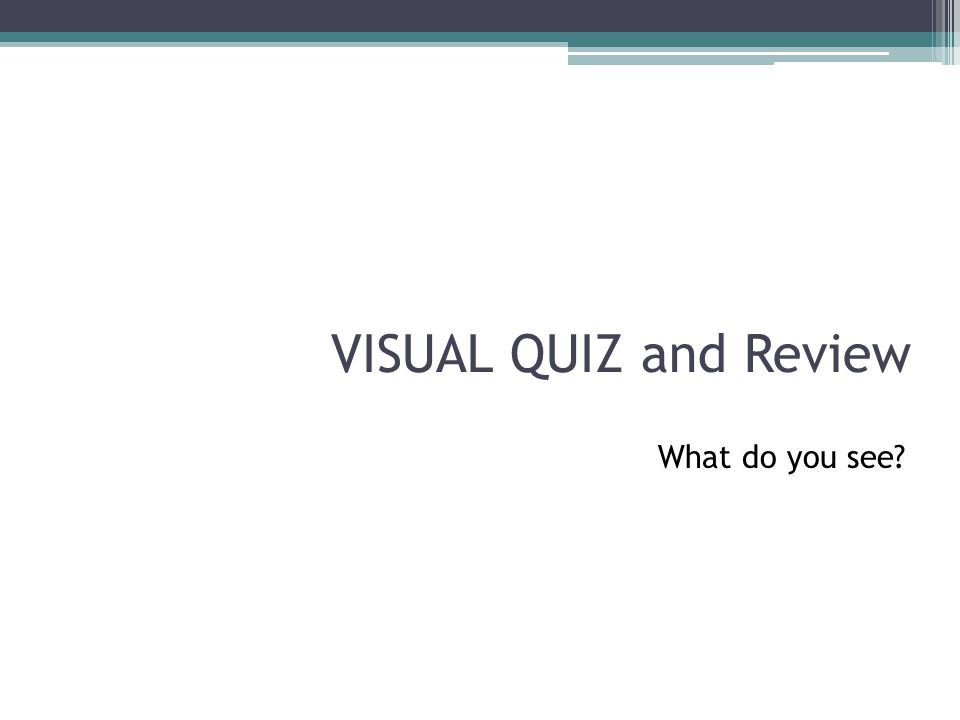 VISUAL QUIZ and Review What do you see