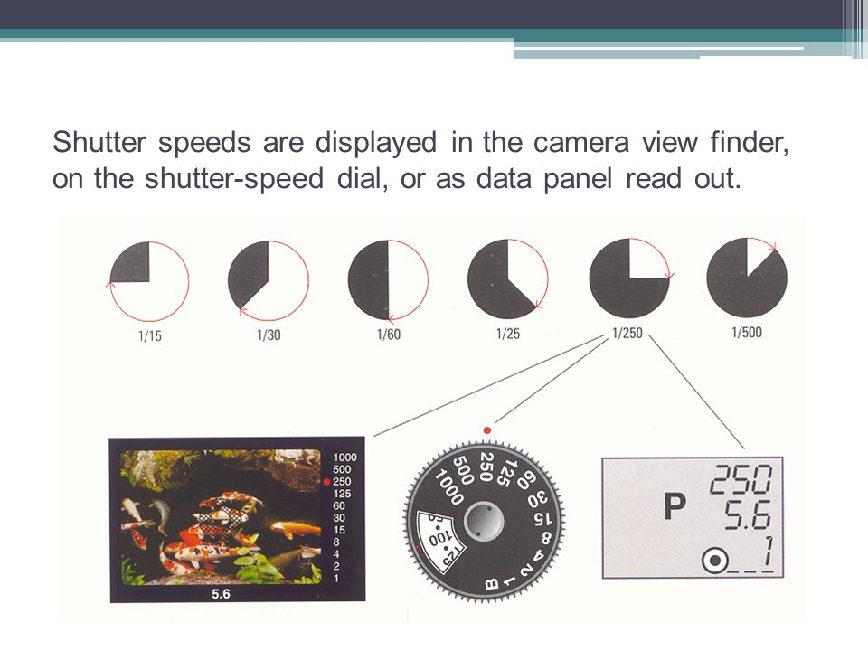 Shutter speeds are displayed in the camera view finder, on the shutter-speed dial, or as data panel read out.