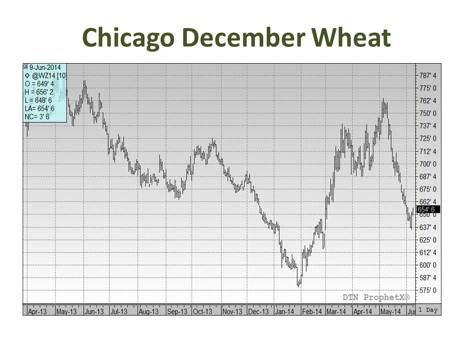 Chicago December Wheat