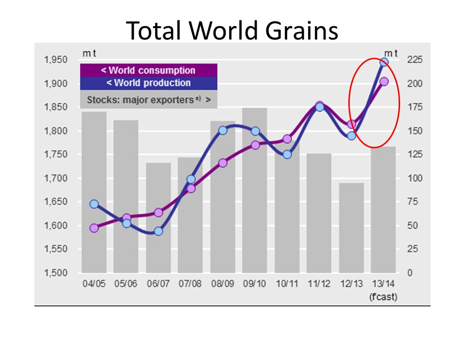 Total World Grains