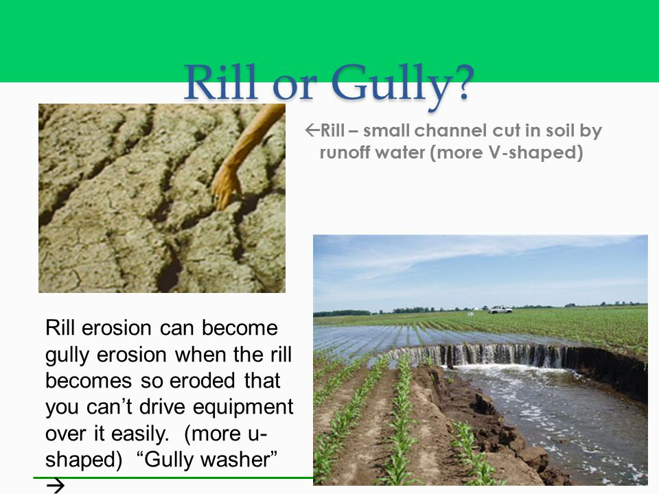 Rill or Gully?  Rill – small channel cut in soil by runoff water (more V-shaped) Rill erosion can become gully erosion when the rill becomes so erode