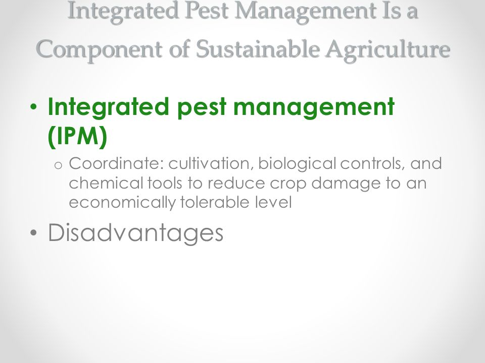 Integrated Pest Management Is a Component of Sustainable Agriculture Integrated pest management (IPM) o Coordinate: cultivation, biological controls,