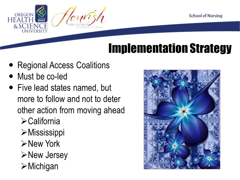 Implementation Strategy Regional Access Coalitions Must be co-led Five lead states named, but more to follow and not to deter other action from moving ahead  California  Mississippi  New York  New Jersey  Michigan