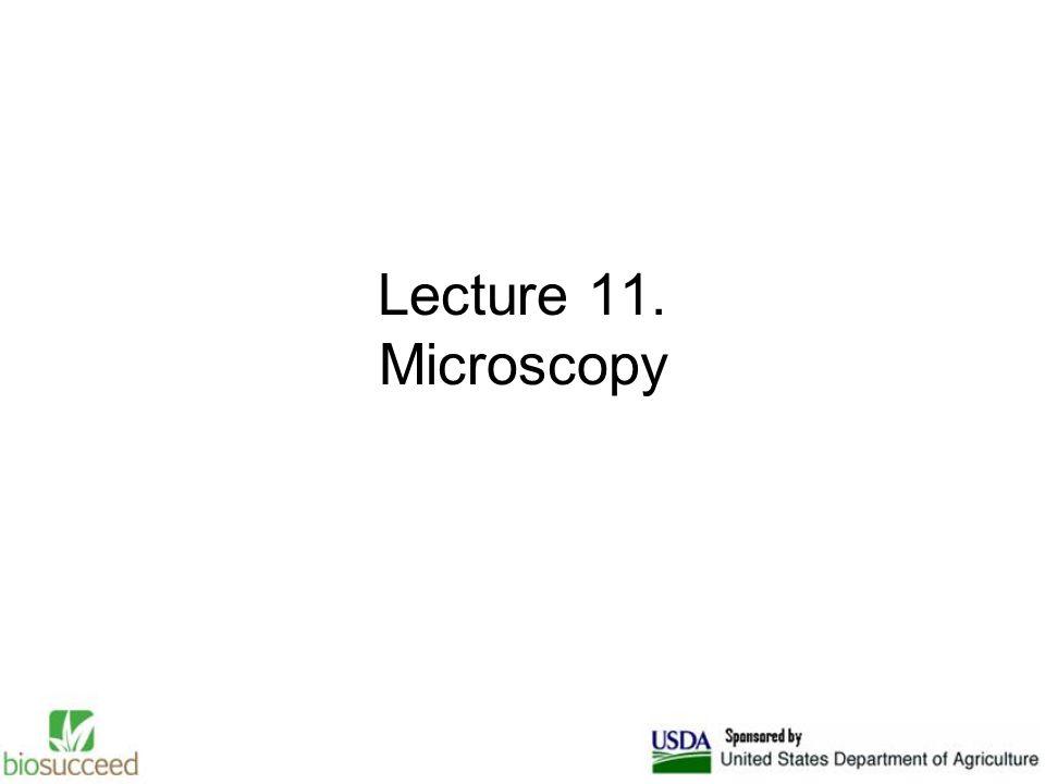 Lecture 11. Microscopy
