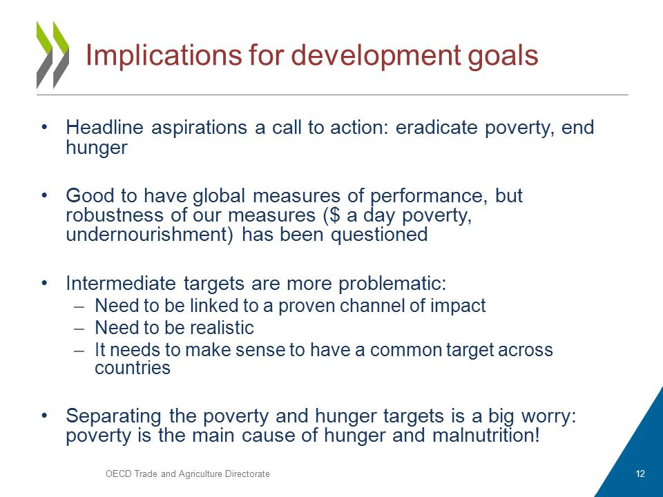 Implications for development goals Headline aspirations a call to action: eradicate poverty, end hunger Good to have global measures of performance, but robustness of our measures ($ a day poverty, undernourishment) has been questioned Intermediate targets are more problematic: –Need to be linked to a proven channel of impact –Need to be realistic –It needs to make sense to have a common target across countries Separating the poverty and hunger targets is a big worry: poverty is the main cause of hunger and malnutrition.