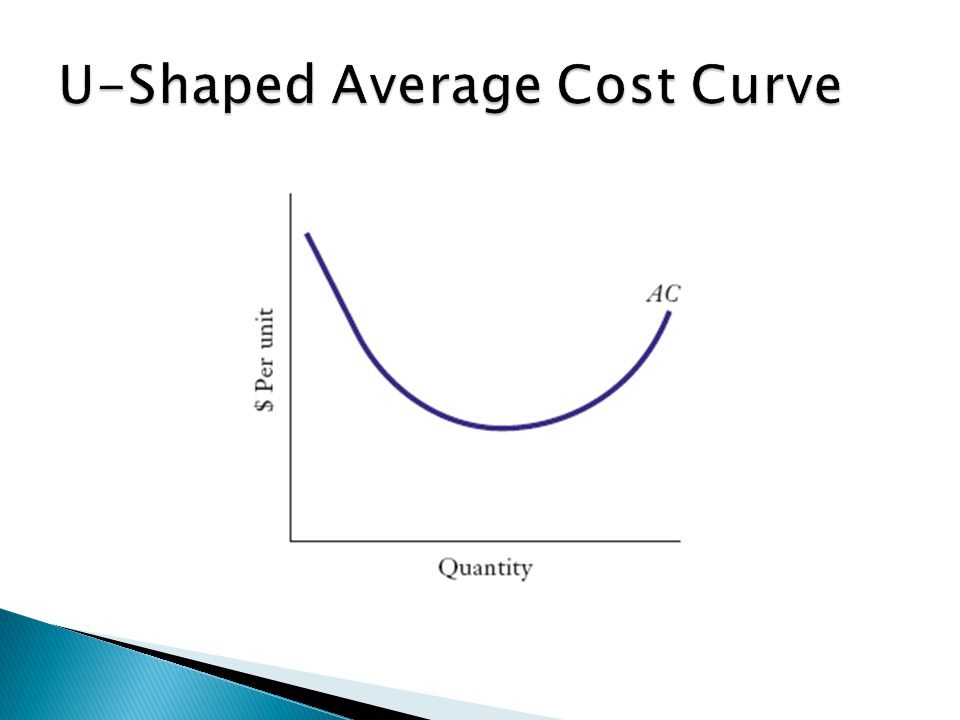  When average cost curves are L-shaped, average costs decline up to the minimum efficient scale (MES) of production and all firms operating at or beyond MES have similar average costs.