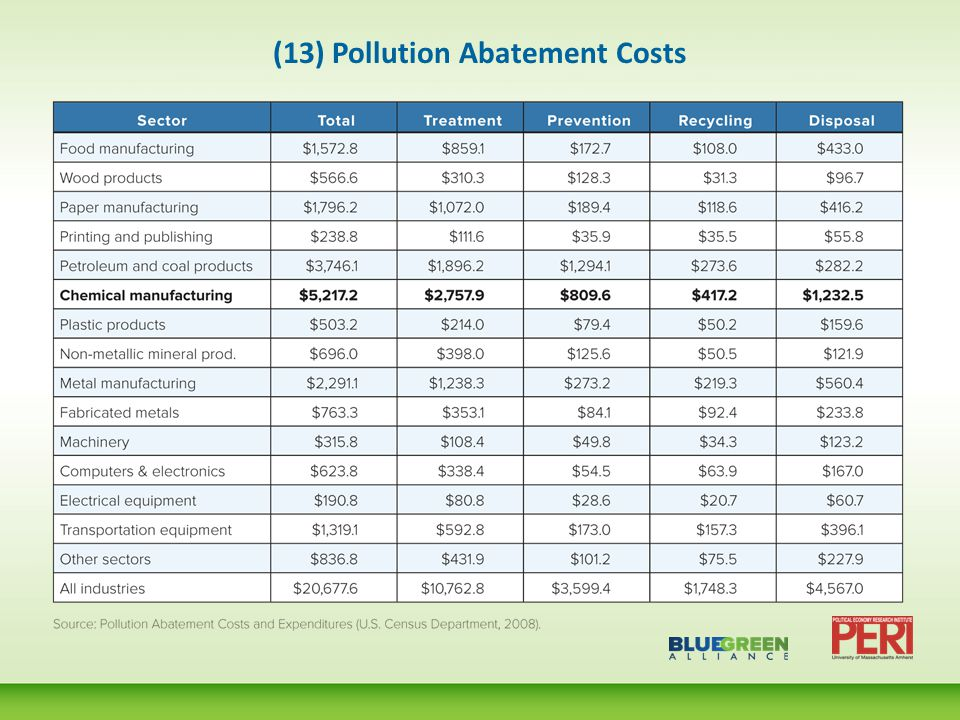 (13) Pollution Abatement Costs