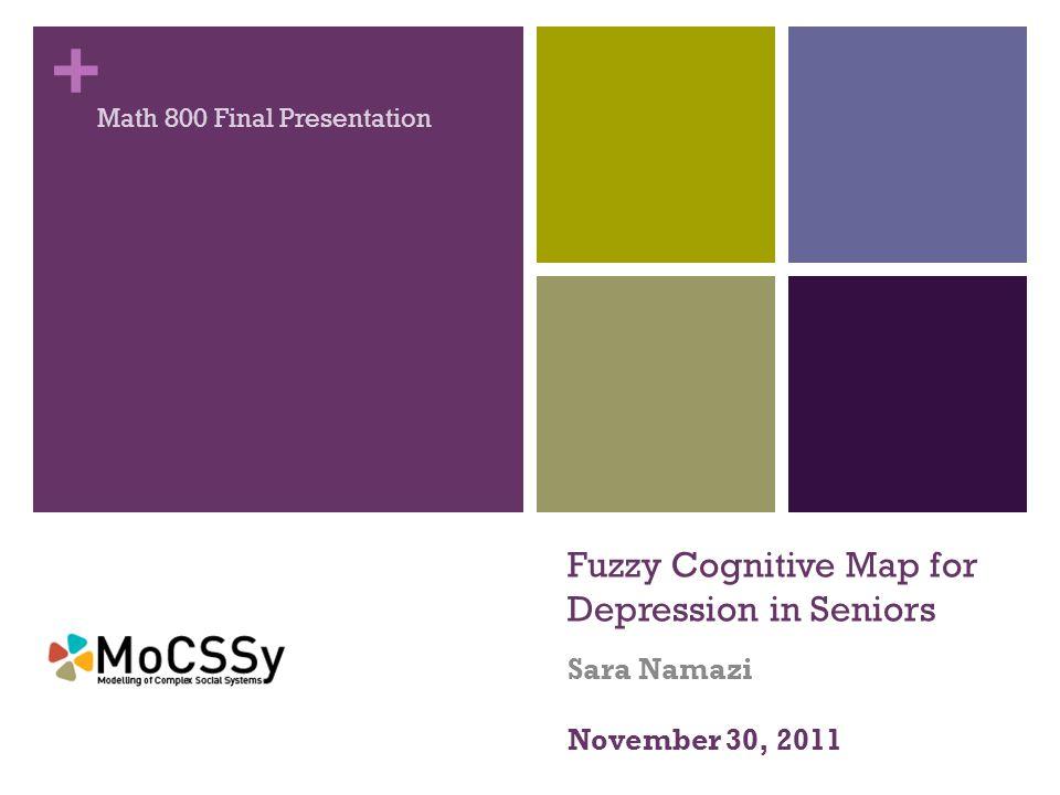 + Fuzzy Cognitive Map for Depression in Seniors Sara Namazi Math 800 Final Presentation November 30, 2011
